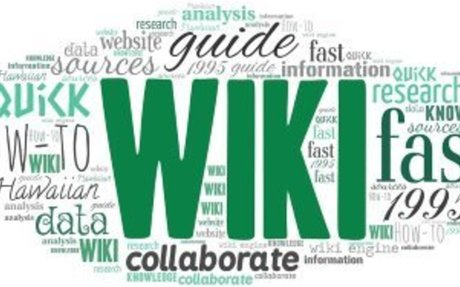 Reflections on Using Wikis: Gimmick or Innovative Assessment?