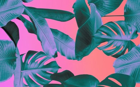 DESIGN // This new fabric replaces polyester with banana plants