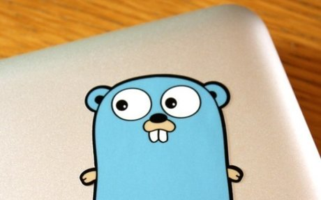Introduction | build-web-application-with-golang | elink