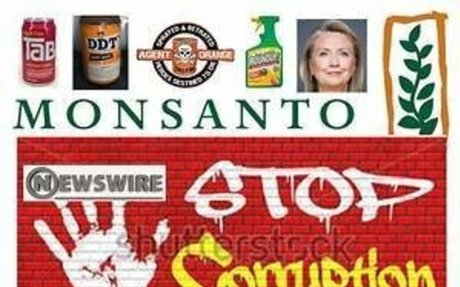 Monsanto's Agent Orange Linked to Higher Cancer in Vets