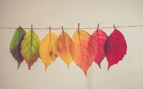 Tip of the Week: Transformational Leadership in Teaching
