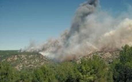 Incendies de forêt : s'adapter et atténuer les impacts du changement climatique