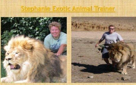Bow Wow Production | Crunchbase – Stephanie Taunton Hesperia Zoo – Medium