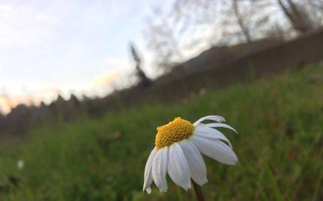 Scenery Photos (@cali.scenery)