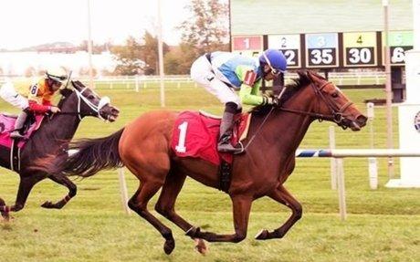 Racing: Barbaro Half Sister Madame Milan Earns Maiden Win