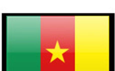 Cameroon Surveyors