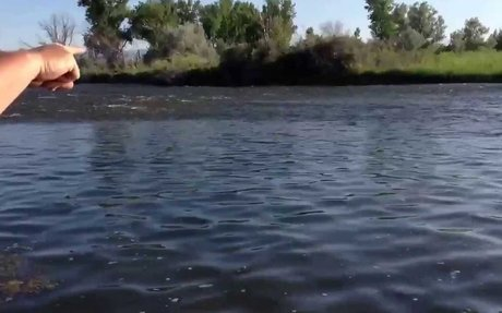 Fly Fishing 101: Reading Water