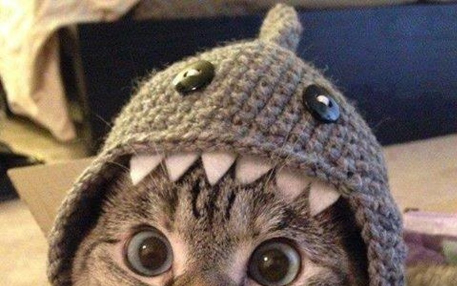 Shark Crochet Pattern Free Tutorials Best Ideas | The WHOot