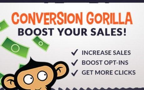 Conversion Gorilla Review