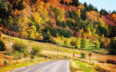 Here Are The Best Times And Places To View Fall Foliage In Iowa