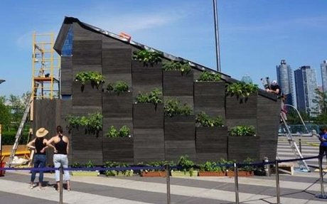 UN and Yale team up to offer big ideas on tiny living