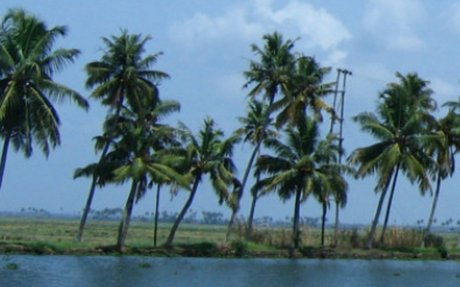 Alleppey Backwater Houseboat Tour packages and Houseboat Booking Online