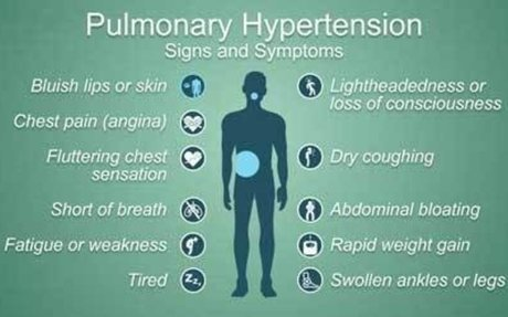 Makanan penurun Hipertensi yang murah