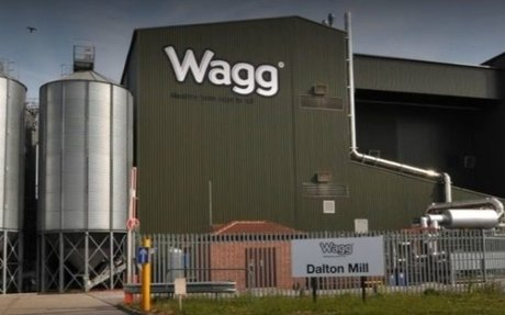 UK brand Wagg tells Amazon it needs 'to have a conversation' over Wag brand