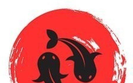 Thiết kế thi công hồ cá koi VN