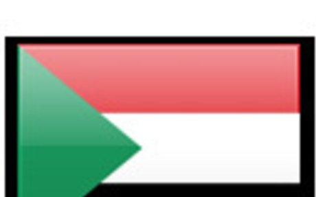 SUDANESE SURVEYORS