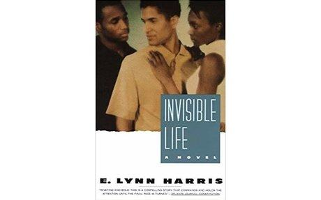 Amazon.com: Invisible Life: A Novel (Invisible Life Trilogy) (9780385469685): E. Lynn H...