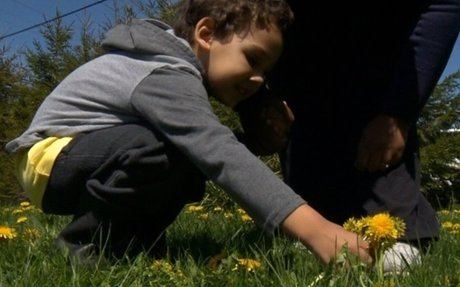 Family concerned over lack of autism supports