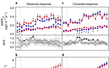 Boreal forest biomass accumulation is not increased by two decades of soil warming