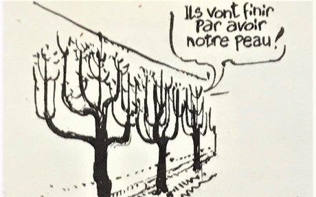 Murs à pêches : Une Mairie sans scrupule… Merci Charlie Hebdo…