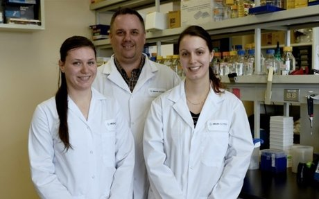 Breast cancer: discovery of a protein linked to metastasis