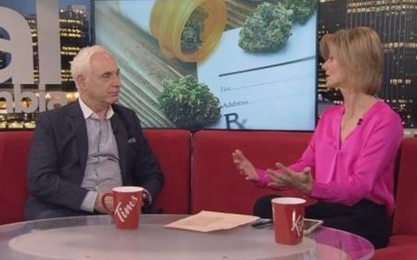 Health Series: The Future of Cannabis in the Medical Sector | Watch News Videos Online