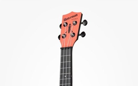 Difference Between a Guitar and a Ukulele | Difference Between