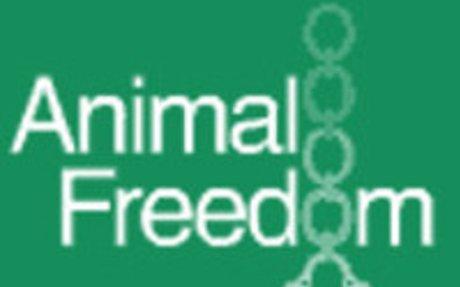 �Los animales tienen derechos!