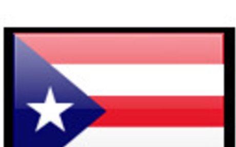 Puerto Rico Land Surveyors