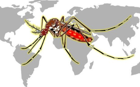 Research Paper published on mapping Malaria epidemic using Geospatial tools