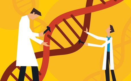 People Back Editing Genes To Treat Disease, But Are Wary Of Inheritable Changes