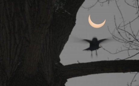 How Often Do Solar Eclipses Happen?