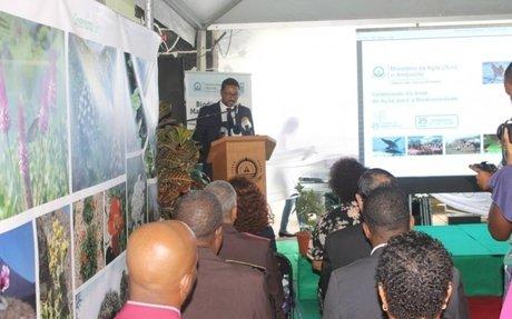 Cabo Verde assinala Dia da Biodiversidade entre ameaças e esperança