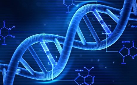 The Science of Performance Genes - Bicycling