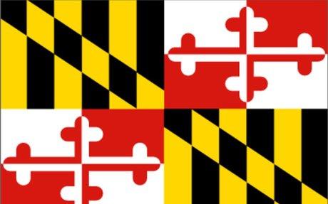 Maryland Land Surveyors (MSS)