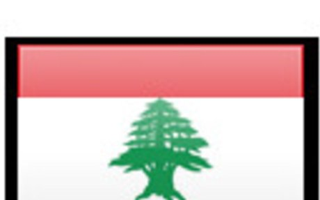 Lebanese Surveyors