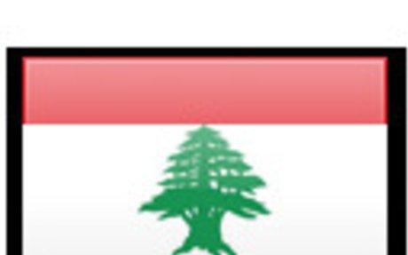 Lebanese Surveyors