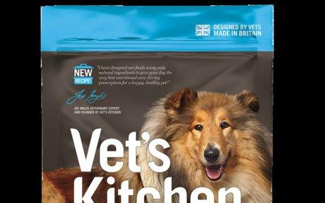 4 Best Dog Sport Activities | Vet's Kitchen Blog