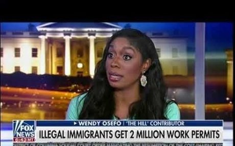 Work Permits For Illegal Immigrants - Tucker Carlson
