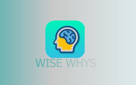 Wise Whys on the App Store
