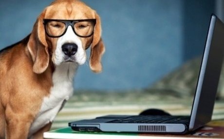 Notebook használat és javítás | Virtuális Notesz