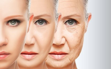 Work And Benefits Of Anti Aging Creams
