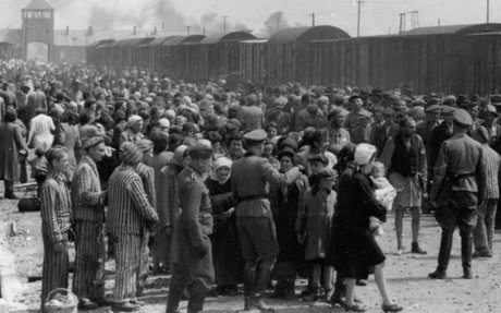 Thank you letter to holocaust speakers