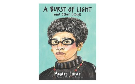 *A burst of light: and other essays