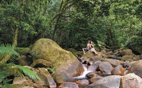 Guide to the Daintree Rainforest, Queensland - Tourism Australia