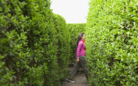 Enter the Labyrinth: What to Know About Social Security