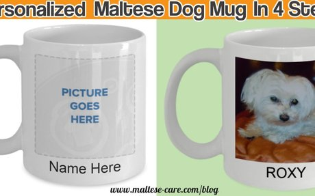 How to create a personalized Maltese dog mug in 4 steps