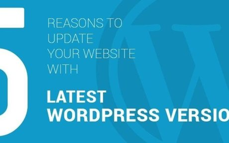 Custom WordPress Web Development Company Services India