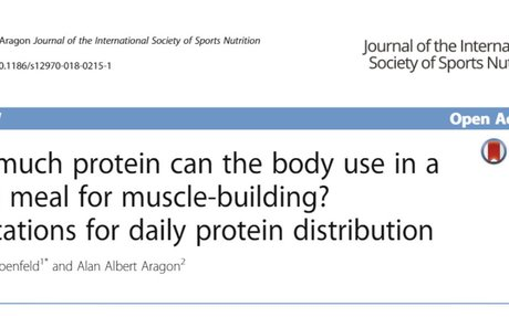 How much protein can the body use in a single meal for muscle-building?