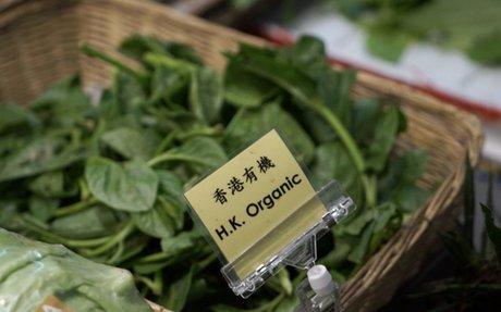 China Daily: Organic Wordplay 丨 Video - China Daily Asia
